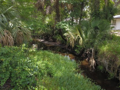 151 S Lake George Dr, Georgetown, FL 32139 - #: 990055