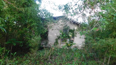 Green Cove Springs, FL home for sale located at 1068 Little Ruth Rd, Green Cove Springs, FL 32043