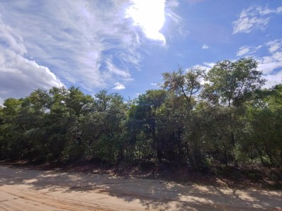 Keystone Heights, FL home for sale located at 5636 Caribbean Cir, Keystone Heights, FL 32656
