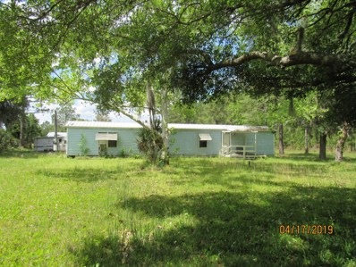 171 Pine Tree Rd, East Palatka, FL 32131 - #: 991597