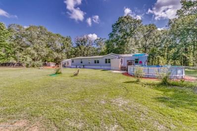 3079 Co Rd 209A, Green Cove Springs, FL 32043 - #: 993386
