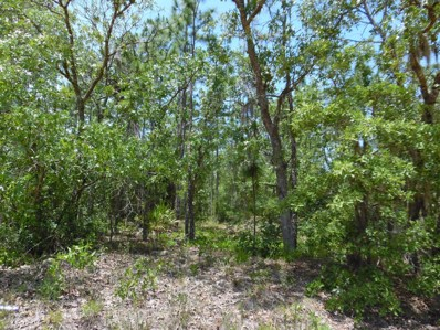 Keystone Heights, FL home for sale located at 7592 Los Padres Ave, Keystone Heights, FL 32656