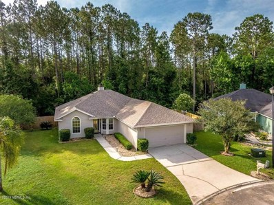 Orange Park, FL home for sale located at 493 Heron Nest Point, Orange Park, FL 32073