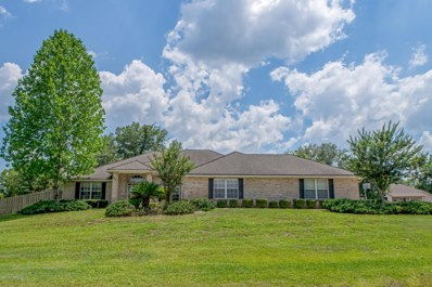 Middleburg, FL home for sale located at 4447 Eli Whitney Dr, Middleburg, FL 32068