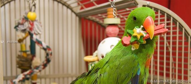 Bird wholesale Supplier NW 119th St, Hialeah Gardens, FL 33018