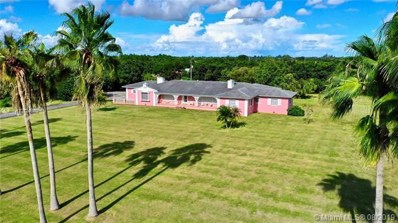 24155 SW 152 Ave, Homestead, FL 33032 - MLS#: A10724980
