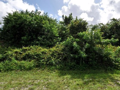 3689 SW San Benito Street, Port Saint Lucie, FL 34953 - MLS#: RX-10391236