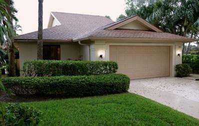 163 Beach Summit Court, Jupiter, FL 33477 - MLS#: RX-10577218