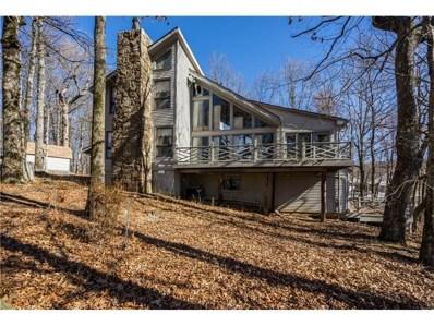 507 Big Stump Mountain Trl, Jasper, GA 30143 - MLS#: 5758252