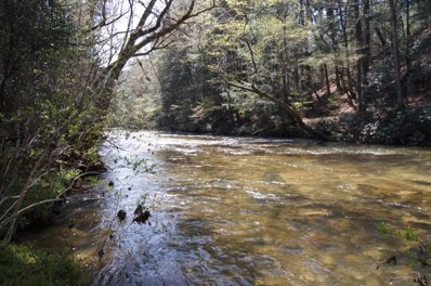 River Mist Dr, Dahlonega, GA 30533 - MLS#: 5999734