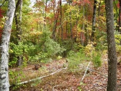 Forrest Hills Rd, Dahlonega, GA 30533 - MLS#: 6013539