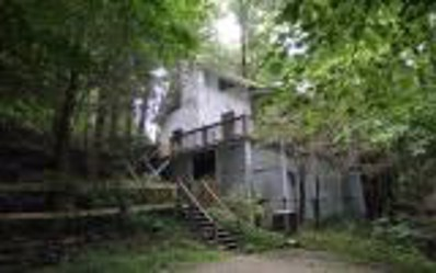 788 Joann Sisson Rd, Blue Ridge, GA 30513 - MLS#: 6046286