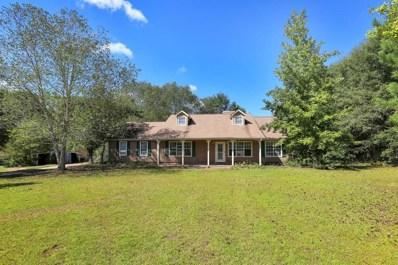 260 Creekside Way, Mcdonough, GA 30252 - MLS#: 6083053