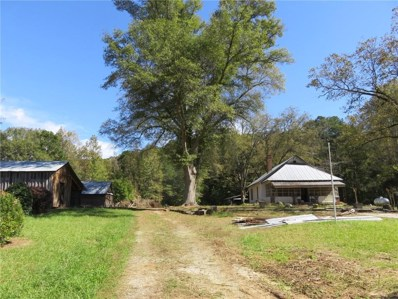 2005 McGarity Road, Temple, GA 30179 - #: 6100935