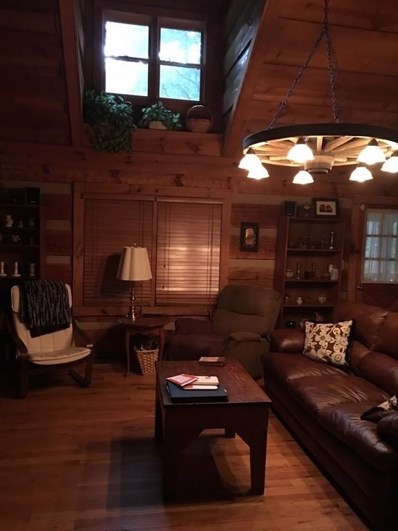 458 Little Pine Mountain Rd, Jasper, GA 30143 - MLS#: 6101093