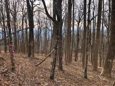 Big Stump Mountain Trail