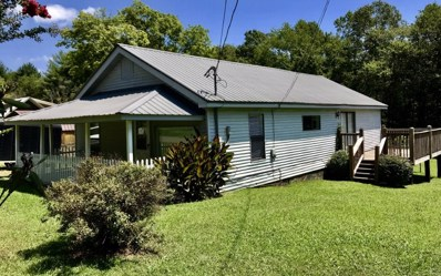 556 Ada Street, Blue Ridge, GA 30513 - #: 291197