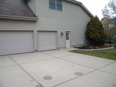 15335 Dan Patch Drive, Plainfield, IL 60544 - #: 10167236