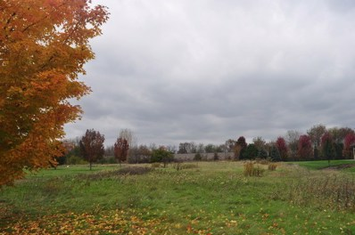 LOT 2  SAVANNA LAKES Drive, Elgin, IL 60124 - #: 08752742