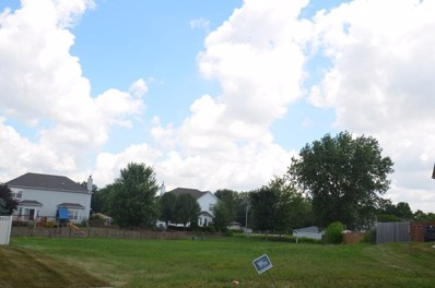 23664 Dayfield Court, Plainfield, IL 60586 - MLS#: 09009419