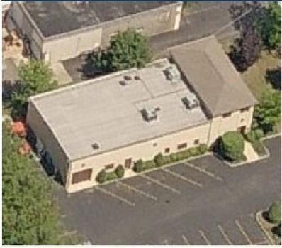 446 MORRIS Street, Mundelein, IL 60060 - MLS#: 09141565