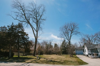 407 Foster Road, Wauconda, IL 60084 - MLS#: 09193789