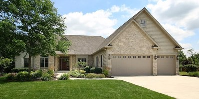 25204 Indian Boundary Court, Plainfield, IL 60544 - MLS#: 09381123