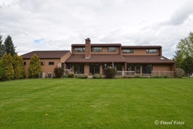 6523 SYCAMORE Court, Mchenry, IL 60050 - #: 09613390