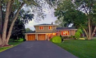 1505 S Monterey Avenue, Schaumburg, IL 60193 - MLS#: 09616827