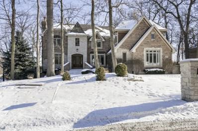 20515 Abbey Drive, Frankfort, IL 60423 - MLS#: 09625224