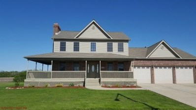 819 Merganser Lane, Peotone, IL 60468 - MLS#: 09630489
