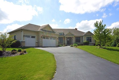 10105 Clearwater Way, Huntley, IL 60142 - #: 09632659