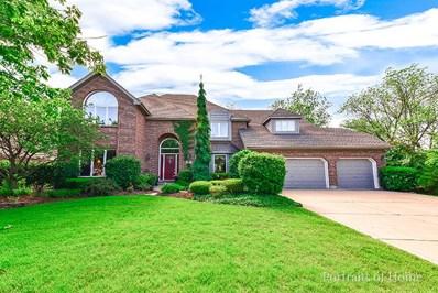 8817 Lake Ridge Drive, Darien, IL 60561 - MLS#: 09632961