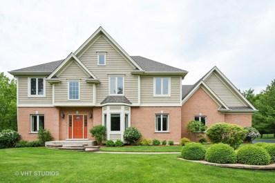 20570 Deerpath Road, Deer Park, IL 60010 - MLS#: 09645126