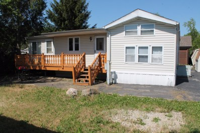 94 Smallmouth Lane, Wilmington, IL 60481 - MLS#: 09648489