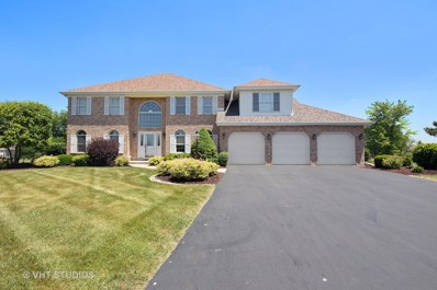 3243 PLATTE Trail, Olympia Fields, IL 60461 - MLS#: 09649611