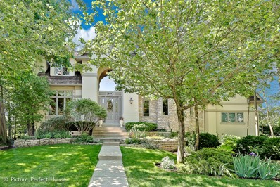 203 Crooked Tree Court, Naperville, IL 60565 - MLS#: 09650710