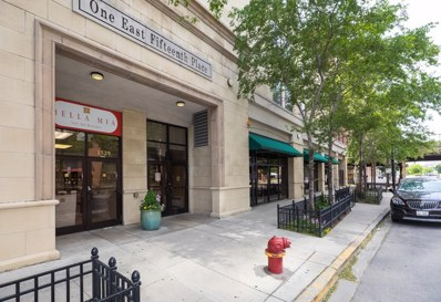 1529 S State Street UNIT 20A, Chicago, IL 60605 - MLS#: 09652708