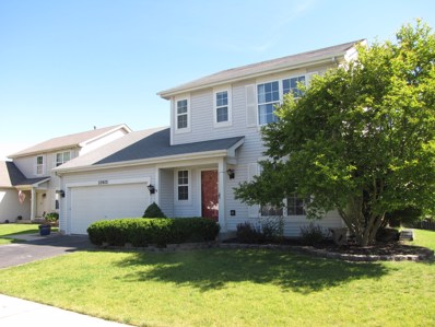 22022 W Miller Court, Plainfield, IL 60544 - MLS#: 09653816