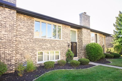 15425 BEGONIA Court UNIT 15425, Orland Park, IL 60462 - MLS#: 09660022