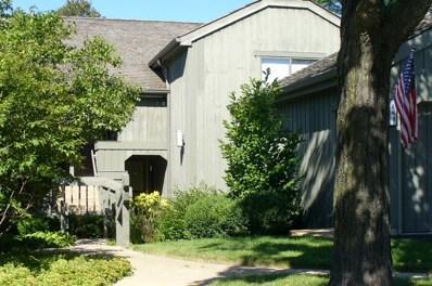 468-B N Valley View Road UNIT C414, Lake Barrington, IL 60010 - MLS#: 09660174