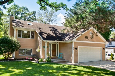 919 Adams Avenue, Wauconda, IL 60084 - MLS#: 09660712