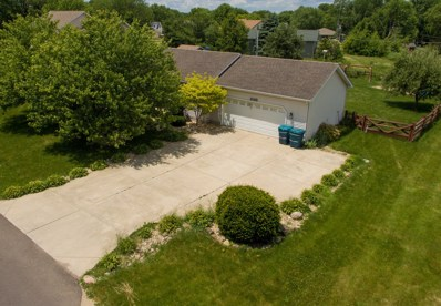 1025 Suzy Street, Lake Holiday, IL 60548 - MLS#: 09666057