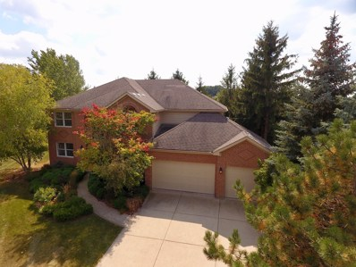 711 GOLDENROD Court, Crystal Lake, IL 60014 - #: 09666725