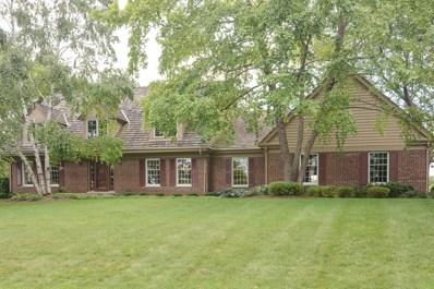 20680 N Swansway, Deer Park, IL 60010 - MLS#: 09669348