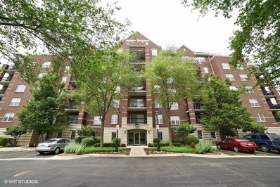470 W Mahogany Court UNIT 202, Palatine, IL 60067 - MLS#: 09670161
