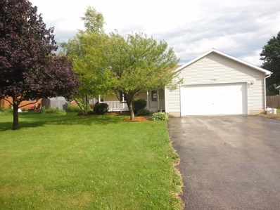 1036 Suzy Street, Lake Holiday, IL 60548 - MLS#: 09674984