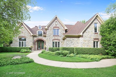 129 Boulder Drive, Lake In The Hills, IL 60156 - #: 09675042