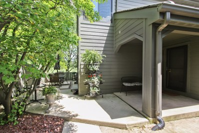 207 N Timber Rdg Lane, Lake Barrington, IL 60010 - MLS#: 09682756