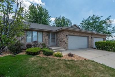 102 Wyndstone Drive, Elwood, IL 60421 - MLS#: 09683142